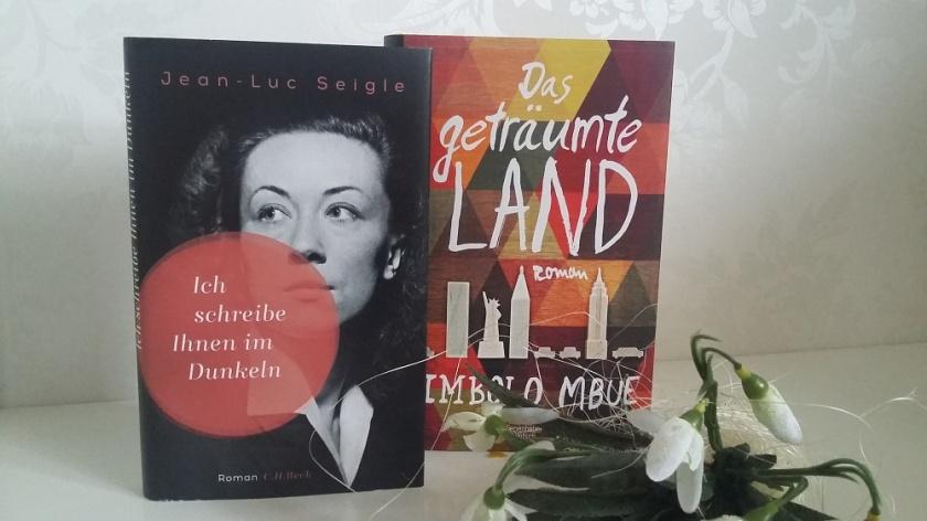 Imbolo Mbue - Das geträumte Land, Jean-Luc Seigle - Ich schreibe Ihnen im Dunkeln
